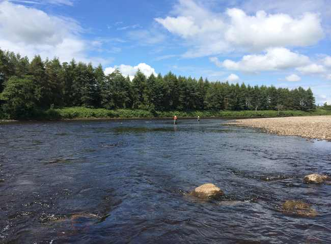 Come To Scotland For Some Salmon Fishing Therapy